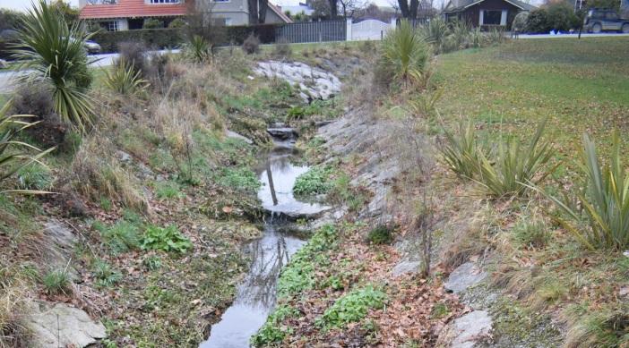 Stoney Creek1